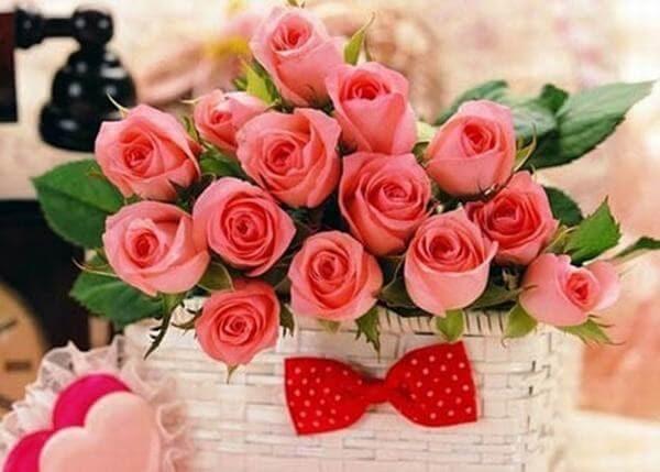 hoa tươi Bình Đại Bến Tre